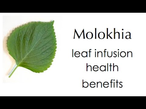 Molokhia leaf health benefits
