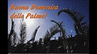 Buona Domenica delle Palme!!!??? Vatican City ???2020