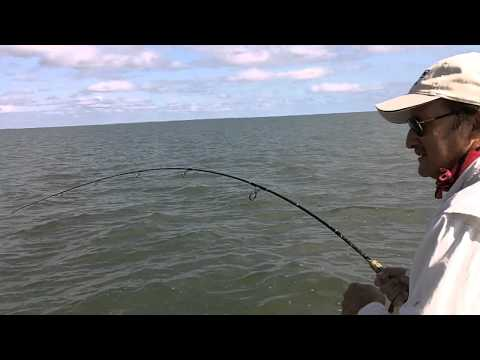 vacation St George Island Bull Redfish.MOV