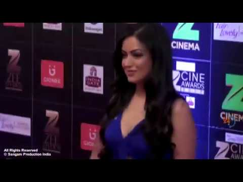 Hot Bollywood Girl Showing Assets at The Red Carpet of Zee Cine Awards
