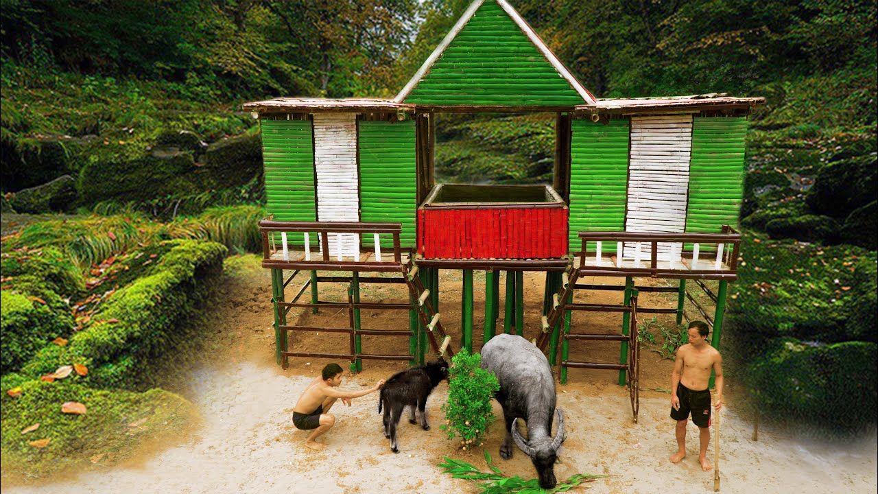 Build The Amazing Bamboo Swimming Pool With Water Slide On Bamboo House And Buffalo Breeding Barn