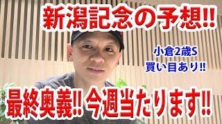 【わさお】新潟記念の予想!! / 小倉2歳S買い目あり【競馬予想】