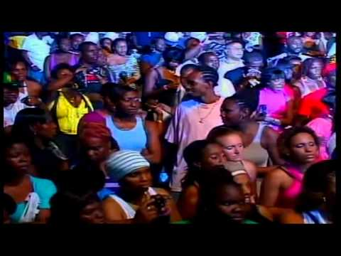 Lion King   I Don't Care, Live! Antigua Carnival 2010