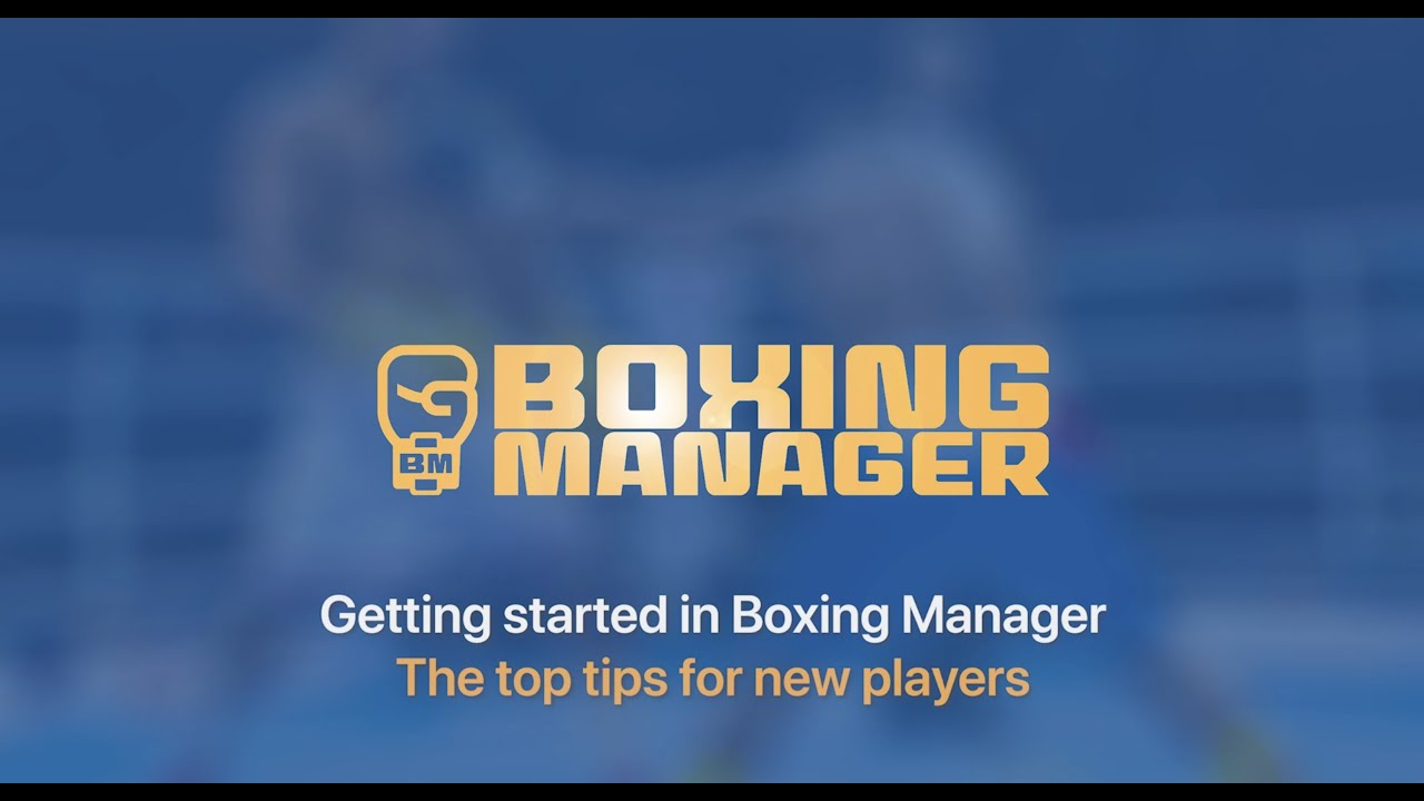 Boxing Manager new player top tips guide