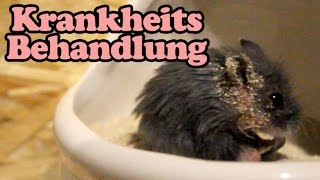 Darthys Pilz Behandlung: Folge 01