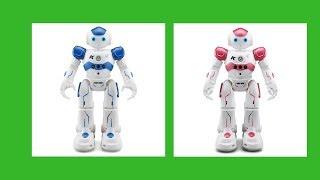 nao robot, bipedo humanoid robot