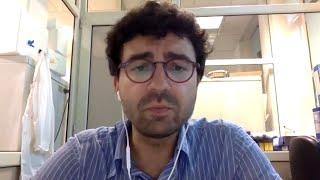 MCL0208: identification of novel genomic prognostic factors