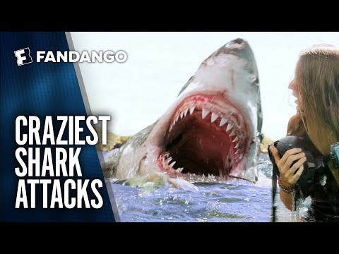 Best Shark Attack Movie Mashup | Movieclips