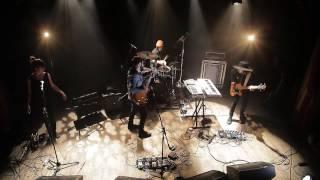 RENARD BLANC - LUNE DE MIEL - 3 AVRIL 2017