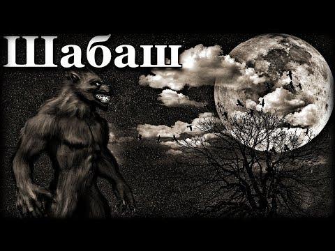 Истории на ночь: Шабаш