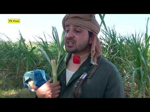 Rahime Ao Karime Gujar Funny Video By PK Vines 2019   PK TV