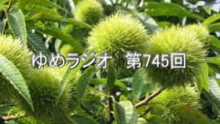京都学派の田辺元がモデル.