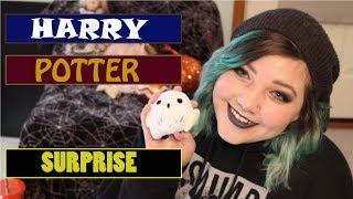 Enchantment Subscription Box/ Harry Potter Subscription Box!