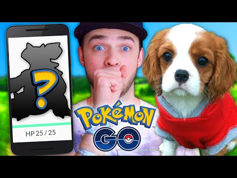 pokemon-go-glitch-+-rare-pokemon-hunt!