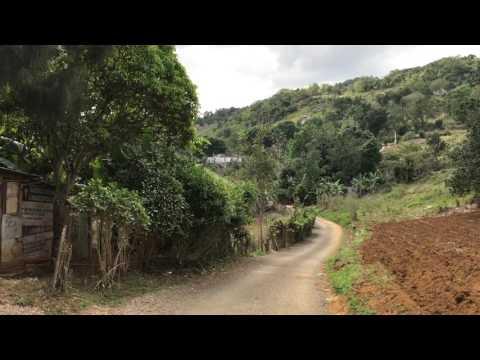 walking through Far Enough district Manchester Jamaica - February 2017