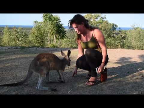 Travel Aftermovie Australia & Fiji 2017/2018