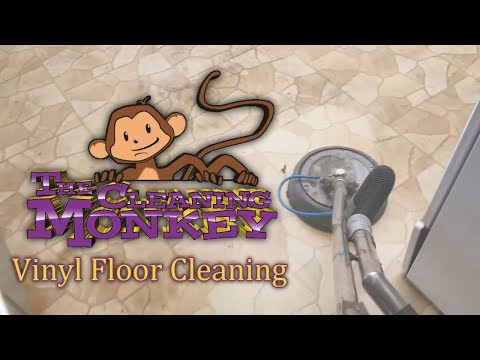 The Cleaning Monkey - Vinyl Floors Cleaning in Sun City