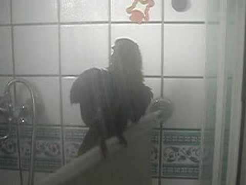 Onder de douche 3 youtube - Douche onder de dakrand ...