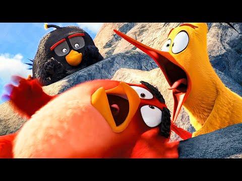 Mighty Eagle Noises Scene - THE ANGRY BIRDS MOVIE (2016) Movie Clip