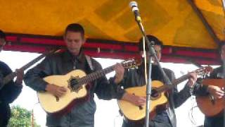 La danza de los mirlos - LOS SONEROS DE ASIS SAN FRANCISCO PUTUMAYO.MOV