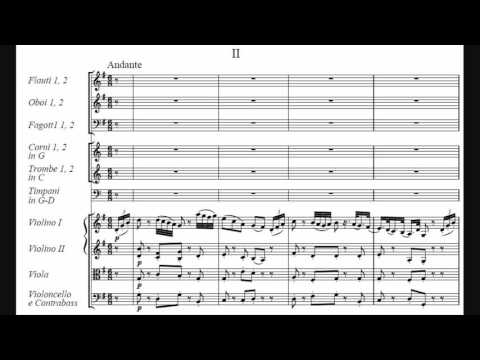 "Joseph Haydn - Symphony No. 96 in D major ""Miracle"""