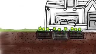 LES ÉCHELLES D'EAU gérer les eaux pluviales de sa maison à la parcelle