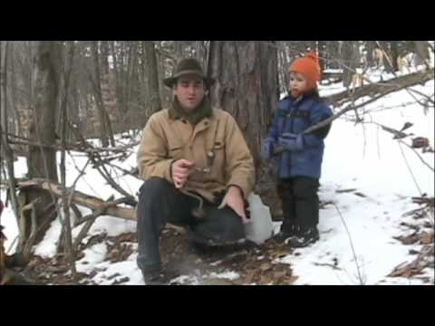 Making Maple Syrup in Montour County Pennsylvania