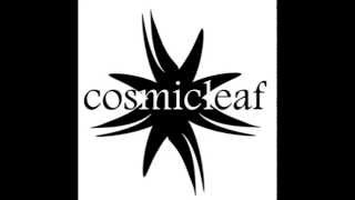 Discovering Cosmicleaf #1 // mixed by Side Liner