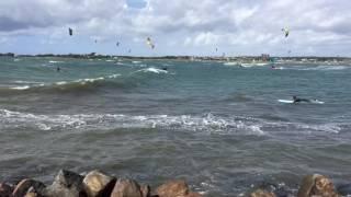 Läjet Longboard surf