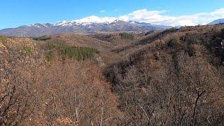 Охота на кабана в Болгарии Часть 1