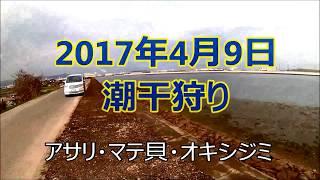 今年2回目の潮干狩りです。1回目は、去年行った広島県の潮干狩り場へ行...