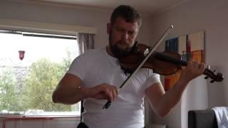 Irish fiddle: Farewell to Eyrecourt