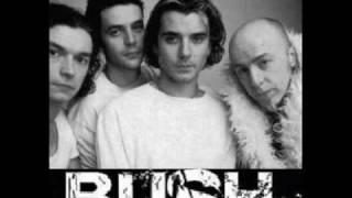 Bush - Greedy Fly Lyrics 1996