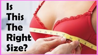 The Perfect Bra Sizes | Are You Wearing the Wrong One?