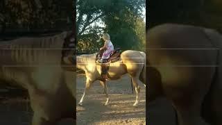Violet Rides Shasta