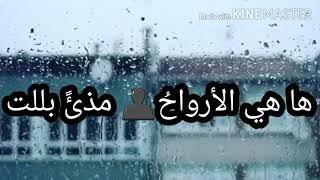 حآلات واتس اب عن الشتاء والمطر||أمطري حباًوطهراً ياسماء||أجمل وأروع انشودة عن الشتاء||ستوريات شتوية