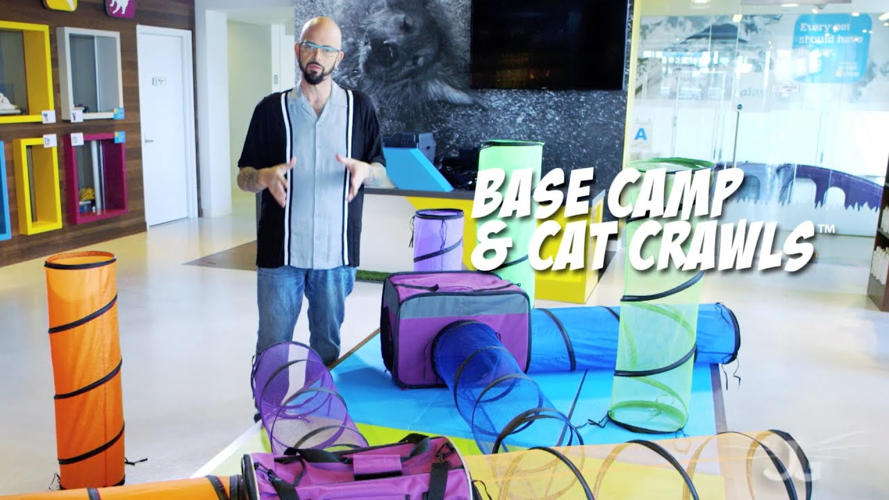 Jackson galaxy collection base camp cat crawls carrier for Jackson galaxy music
