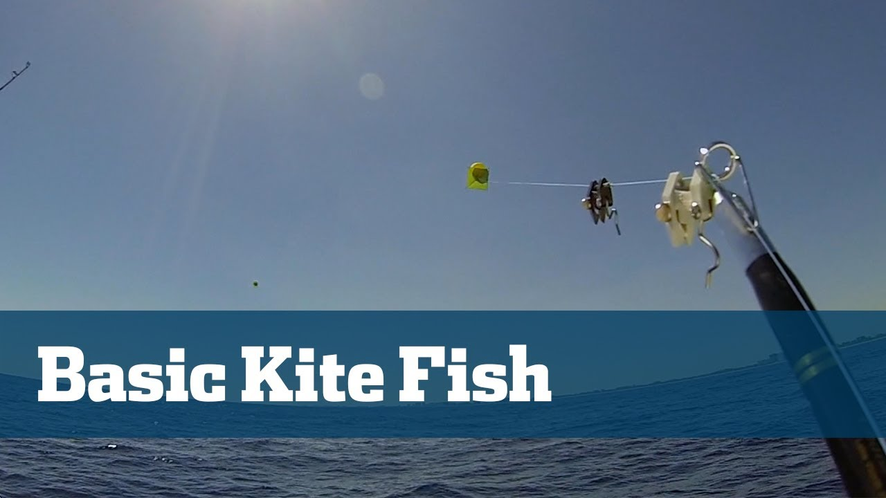 medium resolution of kite fishing rigs how to tie kite fishing rigs florida sport fishing tv youtube