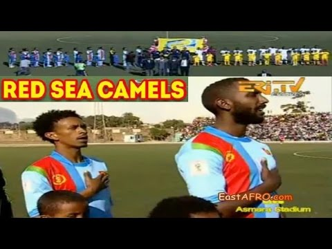 Eritrea Vs Botswana Soccer ERiTV Game (October 10, 2015)