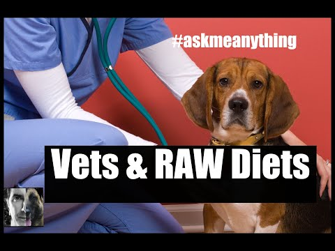 Veterinarians Don't Often Like RAW Diets for Dogs - ask me anything - Dog Health and Training