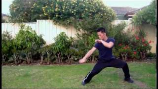 SHAOLIN KUNG FU Animal Attack Forms