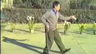 Chen Taijiquan Er Lu (pao Chui) - Feng Zhiqiang