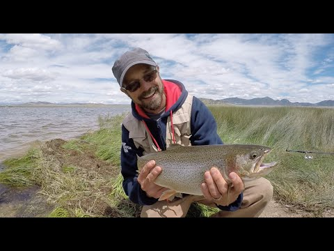 Colorado wickedfisha s1e6 slaying gold medal trout at for Spinney reservoir fishing report
