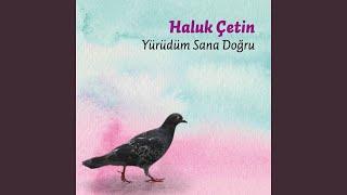 Türkan Saylan Türküsü
