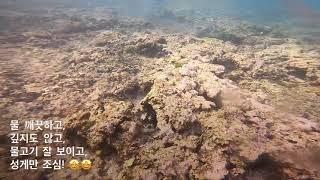 KEEDO의 괌여행 투몬비치 스노쿨링 #고프로8 #괌 …