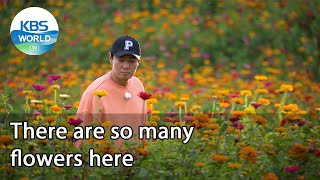 There are so many flowers here (2 Days & 1 Night Season 4 Ep.95-2)   KBS WORLD TV 211017