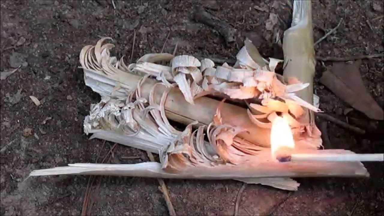Kuvahaun tulos haulle Feather stick