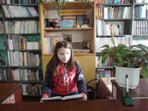 Изображение предпросмотра прочтения – АлинаБезногих читает произведение «Сыновья» В.А.Осеевой