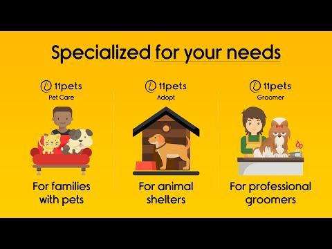 11pets - The most attentive pet-care platform