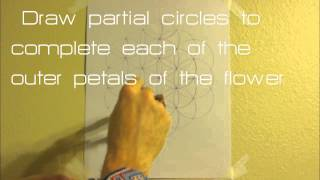 Sacred Geometry: how to draw a flower of life